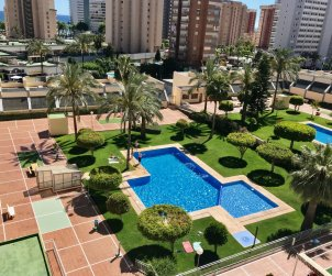 Apartamento   Benidorm para 6 personas con piscina comunitaria y A/C p0