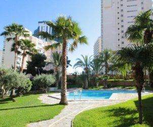 Apartamento   Benidorm para 5 personas con piscina comunitaria p0