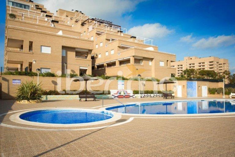Apartamento   Oropesa del Mar para 6 personas con piscina comunitaria p3