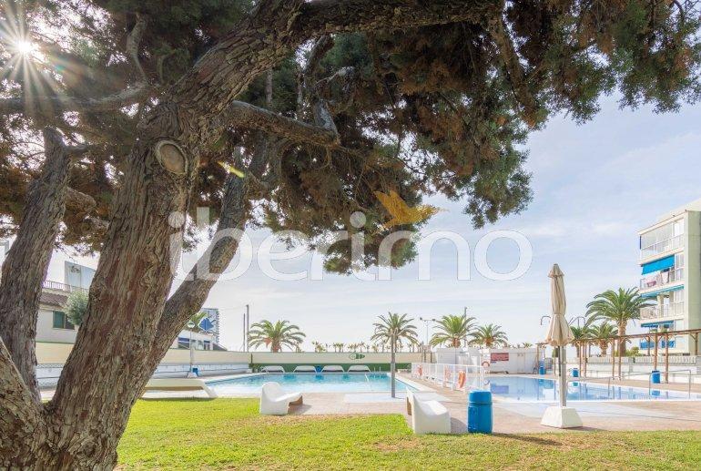Apartamento  en Oropesa del Mar  para 6 personas con piscina comunitaria, parking y cerca del mar  p5