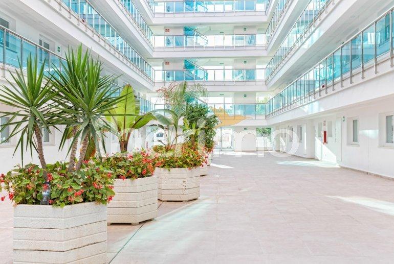 Apartamento  en Alcossebre  para 5 personas en un complejo hotelero con piscina comunitaria y vistas laterales al mar  p38