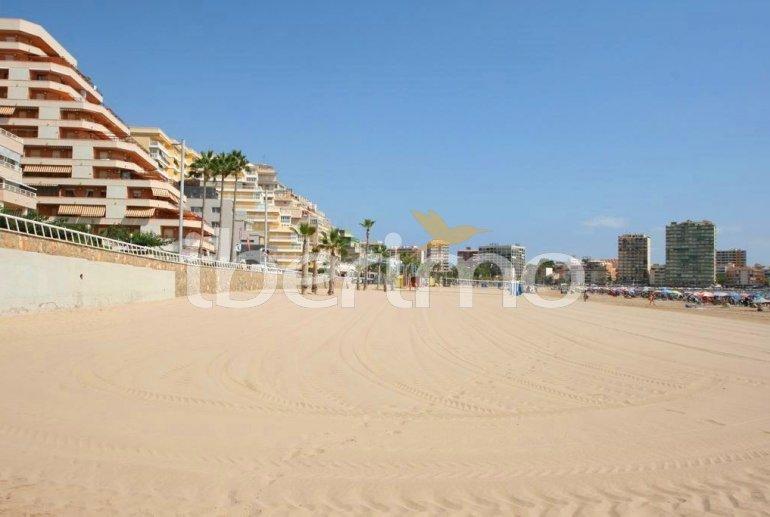 Villa   Oropesa del Mar para 8 personas con piscina comunitaria p73