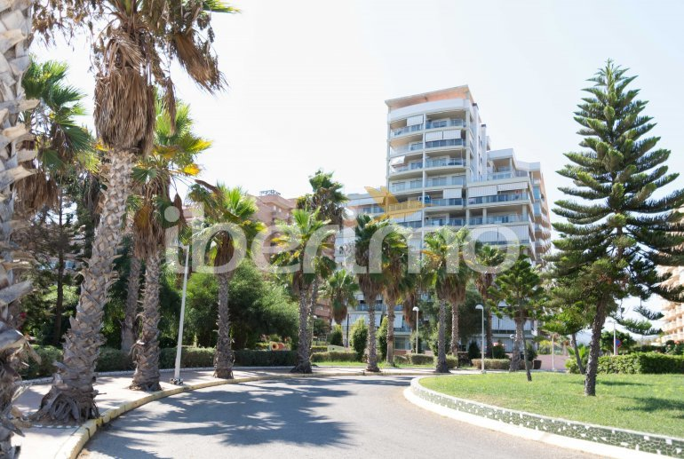 Apartamento   Oropesa del Mar para 6 personas con piscina comunitaria p16