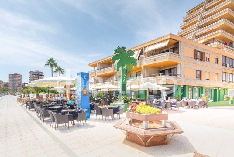 Apartamento   Oropesa del Mar para 6 personas con piscina comunitaria p12