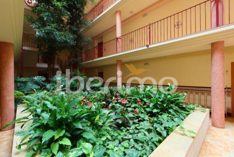 Apartamento   Sant Carles de la Rapita para 4 personas con piscina comunitaria p5
