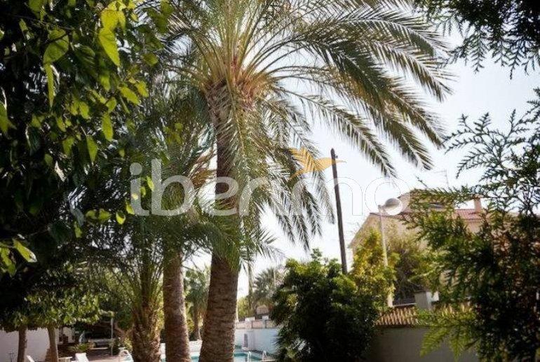 Apartamento   Benicarlo para 6 personas con piscina comunitaria y A/C p17